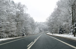 Winter road. Stock Photography