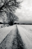 Winter road. In black and white Royalty Free Stock Image