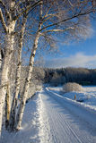 Winter Road. Winterly road. Photo taken in Finland stock photography