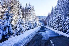 Free Winter Road Stock Images - 31592144