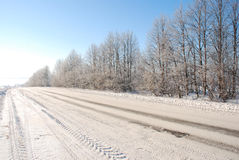 Winter road. The road with tracks of many cars; planting of trees with hoar-frost on branches stock photos