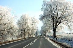 Free Winter Road Royalty Free Stock Photos - 3934998