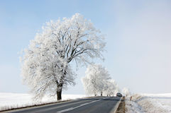 Free Winter Road Stock Images - 3935014