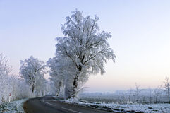 Winter road Royalty Free Stock Photos