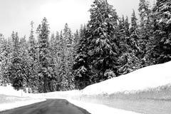 Winter_Road Arkivfoton