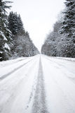 Winter road Stock Image