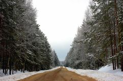 Winter road. Royalty Free Stock Photography