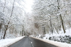 Winter road. Asphalt road leading through the frostet snow covered forest royalty free stock photos