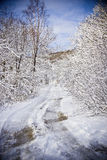 Winter road. The bad snow road in winter forest royalty free stock photography