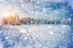 Winter road. Beautiful color high-res illustration with a holida Royalty Free Stock Images
