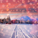 Winter road. Beautiful color high-res illustration with a holida Stock Image
