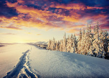 Winter road. Beautiful color high-res illustration with a holida Stock Photos