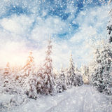 Winter road. Beautiful color high-res illustration with a holida Royalty Free Stock Image
