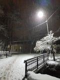Winter road bridge snowing under light. Snowfall at park cold frozen stock images