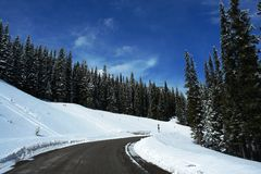 Winter road in canadian rockies Royalty Free Stock Photo