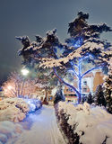 Winter road with christmas illuminations Royalty Free Stock Photo