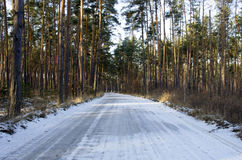 Winter road Stock Photography