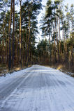 Winter road Stock Images
