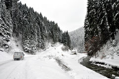 Winter road in country side with fir trees Royalty Free Stock Images