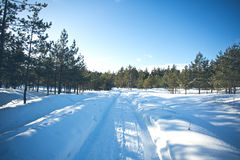 Winter road. In the countryside Royalty Free Stock Images
