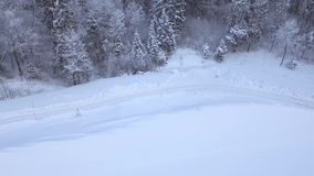 Winter Road Covered with Snow. Aerial shot of winter road, trees and bushes covered with snow stock video footage