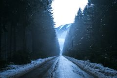Winter road between dark and scary forest. Austrian Alps, Europe Royalty Free Stock Photo