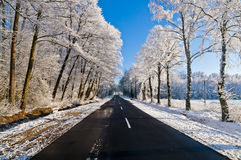 Winter road, driving through snowy forest Royalty Free Stock Photography