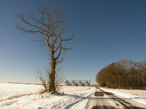 Winter road and farm. A view along a windblown country road through a snow covered open field on a sunny day with farm buildings in the background Stock Photography
