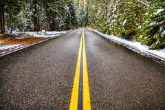 A Winter Road Royalty Free Stock Photos