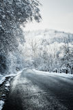 Winter road in forest Stock Photos