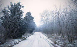 Winter road in the forest. Road covered winter snow in the forest Stock Image