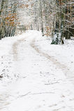 Winter  road in forest covered with snow Royalty Free Stock Image