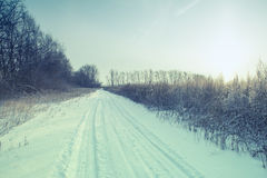 Winter road forest field landscape Stock Image