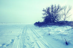Winter road forest field landscape Royalty Free Stock Image
