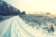 Winter road forest field landscape Stock Photography