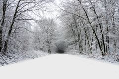Winter road in forest full of snow stock images