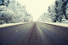 Winter road and forest Stock Photos