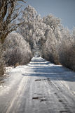 Winter road with frosted trees and rime Royalty Free Stock Photo