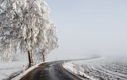 Winter Road going in to the fog Royalty Free Stock Photo