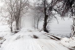 Winter Road going in to the fog Royalty Free Stock Image