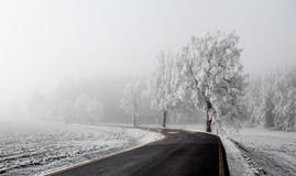 Winter Road going in to the fog Royalty Free Stock Photography