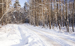 The winter road Royalty Free Stock Photo