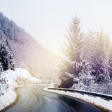 Winter Road Icy Forest Covered Snow Scenic Mountain Austria stock photography