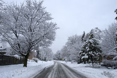 Winter Road. A winter road, just after the snowfall. Picture taken just outside Stock Photography