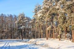 Winter road landscape Stock Photo
