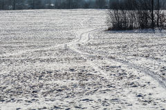 Winter road in landscape Stock Images
