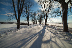 Winter road in Latvia, Europe. Royalty Free Stock Photography