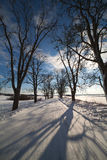 Winter road in Latvia, Europe. Royalty Free Stock Images