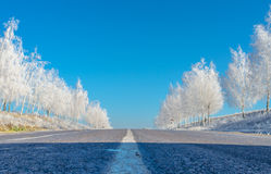Winter road. Morning on the road in Moldova royalty free stock photography