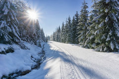 Winter road in mountains. Road in mountains with groomed ski trail and stream beside at winter in sunny day. Trees covered with hoarfrost and fresh snow Stock Photos